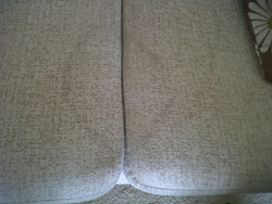 Carpet and Suite cleaning